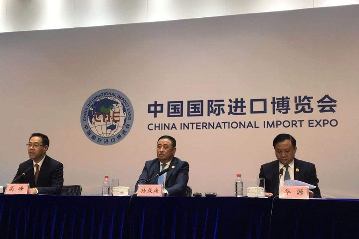500,000 Professional Buyers Have Visited 2nd China International Import Expo