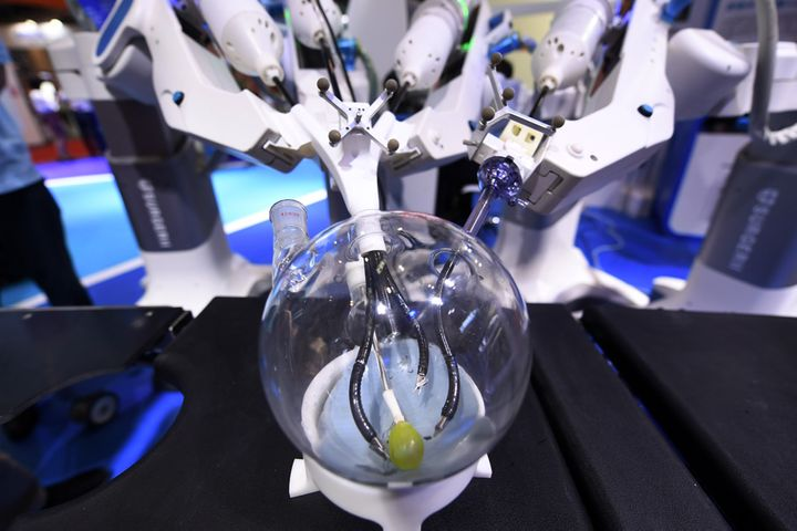 Bot Surgeons, Dogs, Fish Mingle at World Robot Conference in Beijing