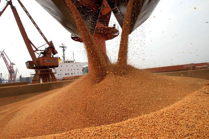 Brazilian Soybean Exports to China Unaffected by Covid-19: Industry Leader