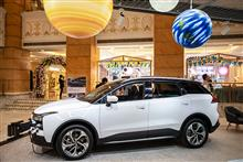 China's Car Sales Fall for Third Straight Year in 2020, Industry Group Says