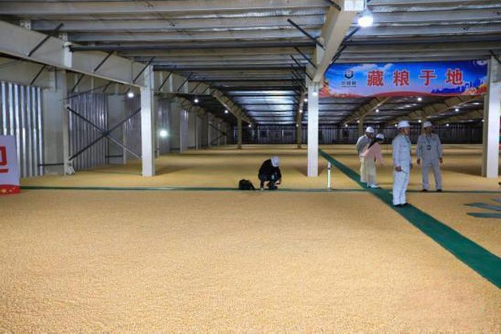 China's Emergency Grain Processors Are Mostly Back to Work