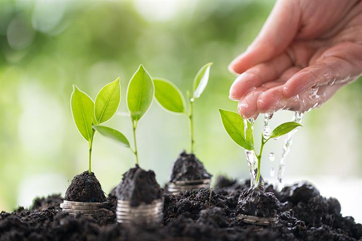 China's Envision Group, Sequoia Capital to Set Up USD1.5 Billion Carbon-Neutral Fund