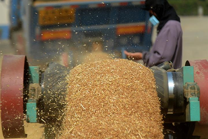China's Grain Output to Hit 670 Million Tons in 2020 Despite Smaller Crops