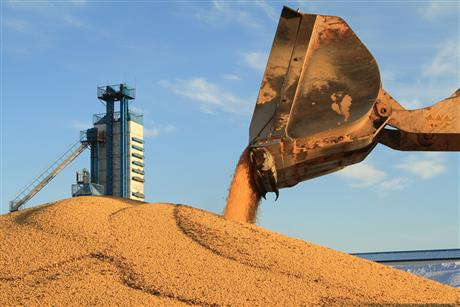 China's Grain Security Is Assured, But More Emphasis Needs to Be Put on Seeds, Minister Says