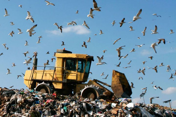 China Halved Solid Waste Imports in First Quarter Following Ban