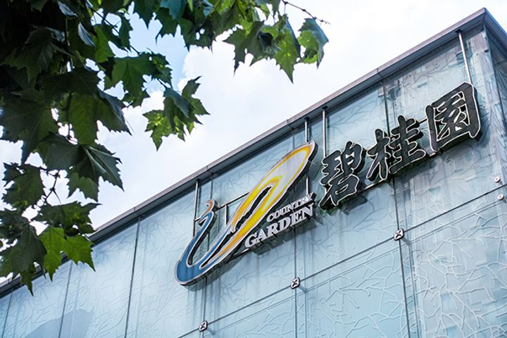 China's Property Giant Country Garden to Build USD11.7 Billion Robot Valley