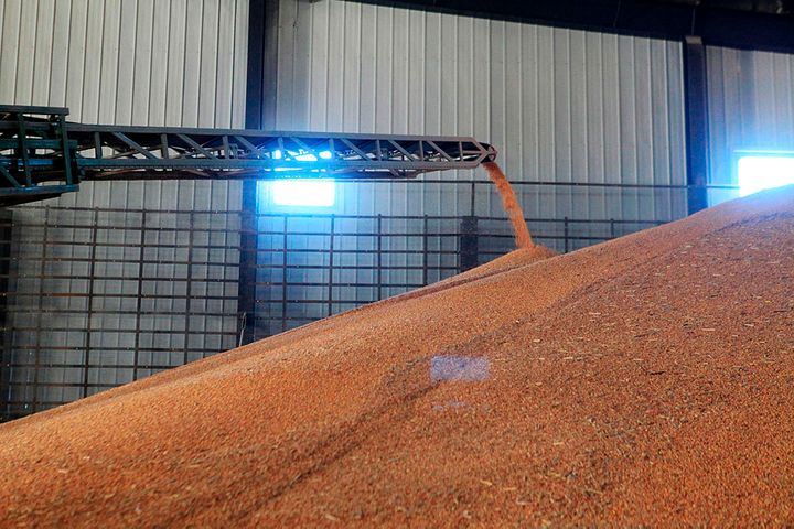 China's Virus-Hit Hubei Has Over Six Months' Worth of Grain in Reserve