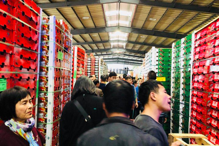 Chinese E-Commerce Platforms Promote Chilean Fruit Imports
