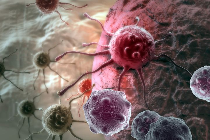 Chinese, German Firms Tie Up to Cooperate in Oncology