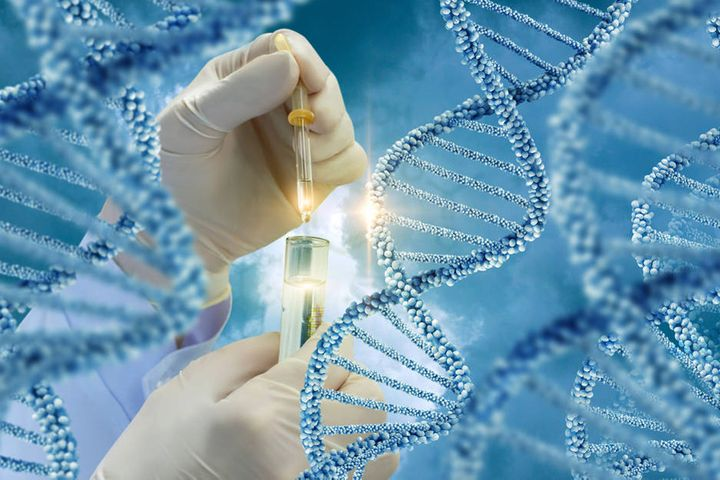 Chinese Scientists Seek to Lay Out 10,000 Ameba-Like Organisms' DNA for First Time
