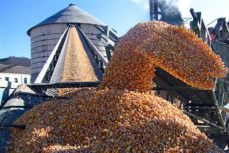 Dalian Commodity Exchange to Raise Corn Futures Margins to Curb Speculation as Prices Soar