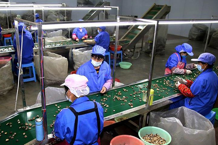 [Exclusive] SMEs Need More Help as China's Hubei Faces Big GDP Drop, Economist Says
