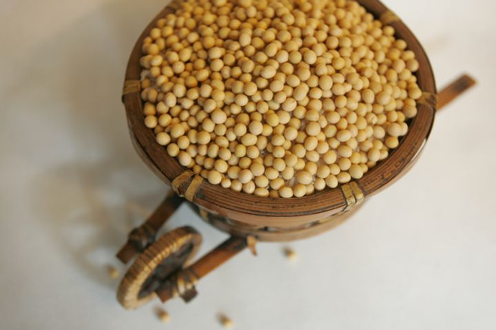 Former Soybean Import Giant Chenxi Declares Bankruptcy