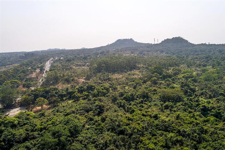 Haikou to Build China's Only Volcanic Park in Tropical Island City