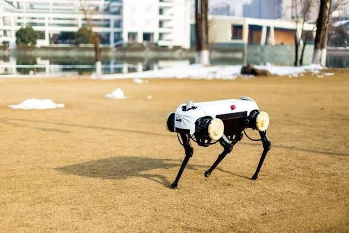 Leading Chinese University Aims to Rival Boston Dynamics With Robot Dog