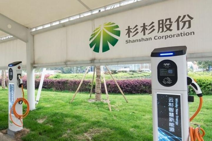 Ningbo Shanshan Invests USD265 Mln in China Molybdenum to Secure Lithium Battery Raw Material Supply