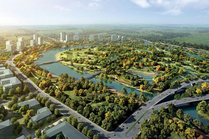 Shanghai's 'Beauty Valley' Is Set to Go Global, Show Competition Need Not Be a Zero-Sum Game