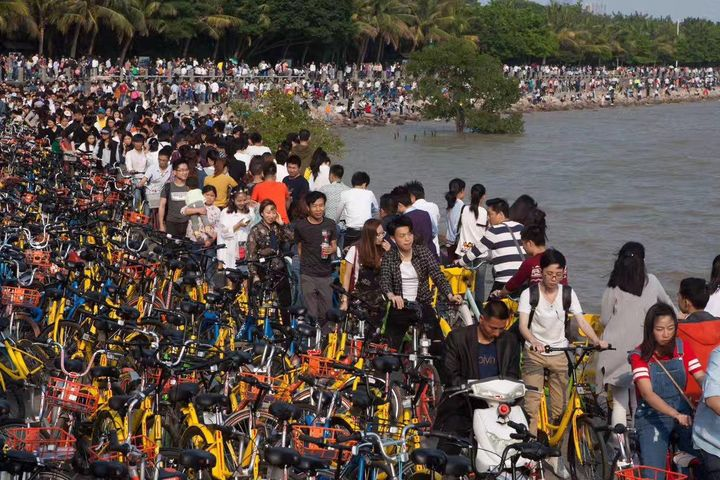 Shenzhen Halts Rollouts of Shared Bikes