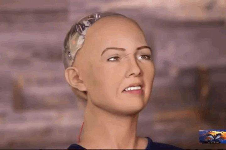 Sophia the AI Robot Is First Non-Human Recipient of UN Technology Innovation Competition Gong
