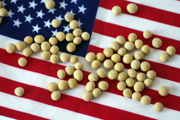 US Soy Farmers Urge Washington to Cool China Trade Tensions