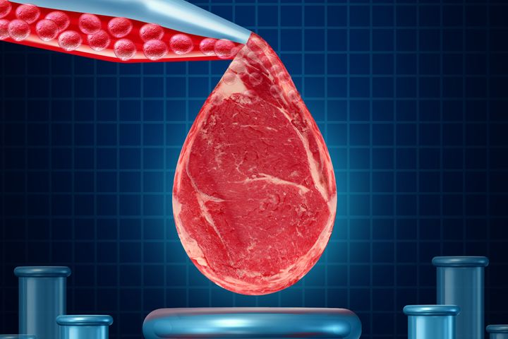 Vege-Meat Packers Defy China's Market Slump as Shares Jump by Daily Limit