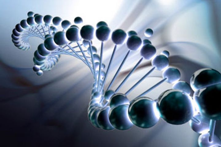 Will the Gene Editing of Human Embryos Continue Clinical Trials?