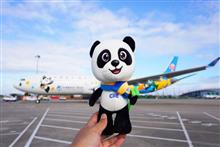 World's First CIIE-Themed Plane Stops at Paris in Premiere International Flight